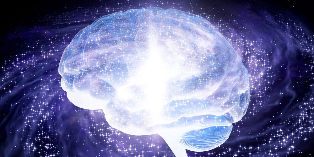 大脳が覚醒するイメージ